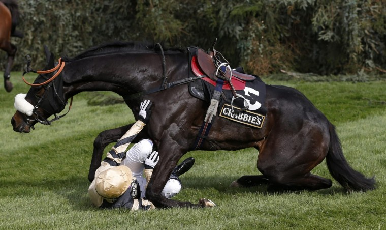 Fago, ridden by Barry Fehilly, falls at the open ditch in the 'Supporting The Everton In The Community Steeple Chase' during the Grand National horse racing meeting at Aintree, northern England. (Russell Cheyne/Reuters photo)