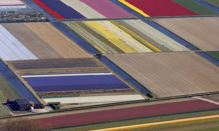 Aerial view of flower fields near the Keukenhof park, also known as the Garden of Europe, in Lisse. Keukenhof, employing some 30 gardeners, is considered to be the world's largest flower garden displaying millions of flowers every year. (Yves Herman/Reuters)