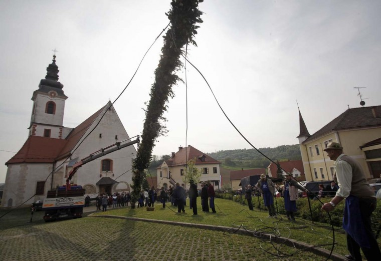 Villagers lift up a 29-metre-long butara, a pole which locals stick symbolic palm fronds consisting of olive branches and local shrubbery, during a Palm Sunday procession at the church in the village of Volicina April 13, 2014. (Srdjan Zivulovic/Reuters)