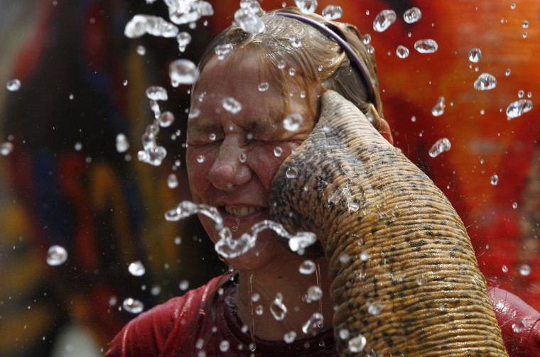 A tourist reacts as an elephant sprays her with water in celebration of the Songkran water festival in Thailand's Ayutthaya province. Songkran, the most celebrated festival of the year, marks the start of Thailand's traditional New Year. (Chaiwat Subprasom/Reuters)