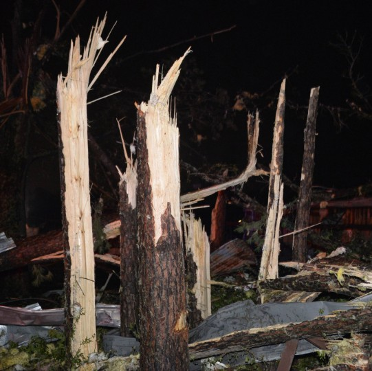 Damaged trees are seen after a tornado hit the town of Mayflower, Arkansas around 7:30 pm CST, late April 27, 2014. Tornadoes ripped through the south-central United States on Sunday, killing at least 12 people in Arkansas and Oklahoma and wiping out entire neighborhoods of homes, according to officials, as rescue workers searched in darkness for survivors. In Mayflower, some of about 45 homes were destroyed in a newer subdivision and a lumberyard was damaged, said Will Elder, an alderman in the city of 2,300 people. (Gene Blevins/Reuters)