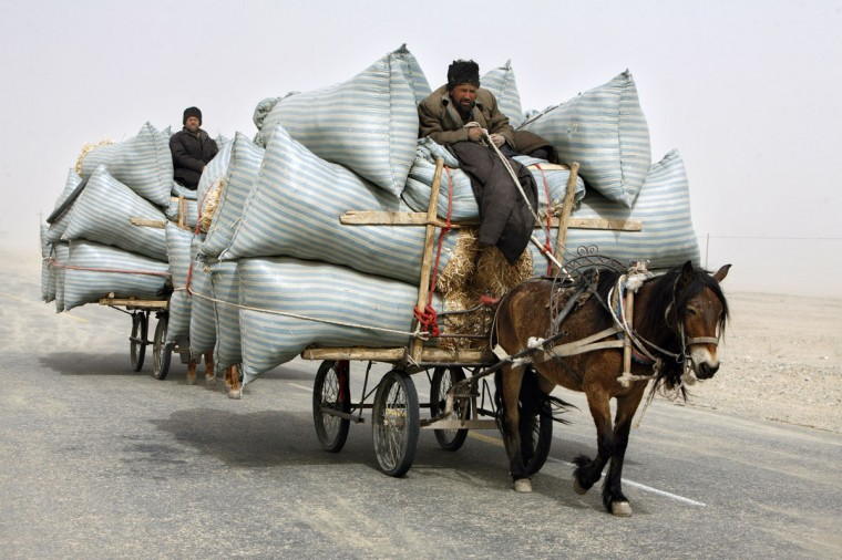 Uighur men ride their horse carts during a sandstorm as they deliver hay around the Paklamakan desert in China on April 5, 2008. (REUTERS/Nir Elias)