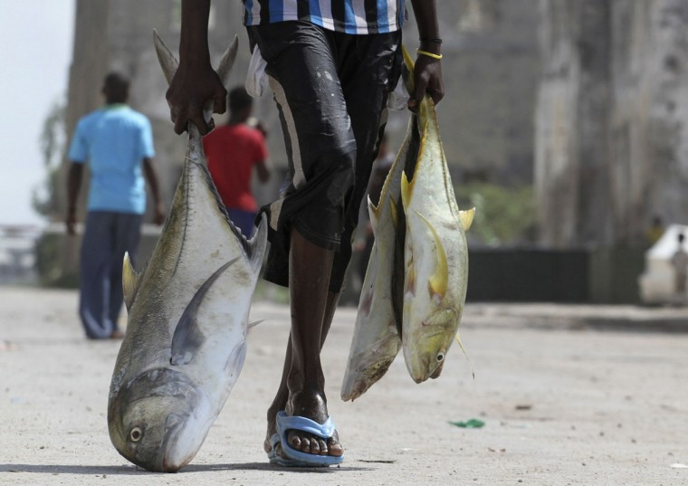 A man carries fishes from the shores of the Indian Ocean in Mogadishu June 12, 2012. (REUTERS/Ismail Taxta)