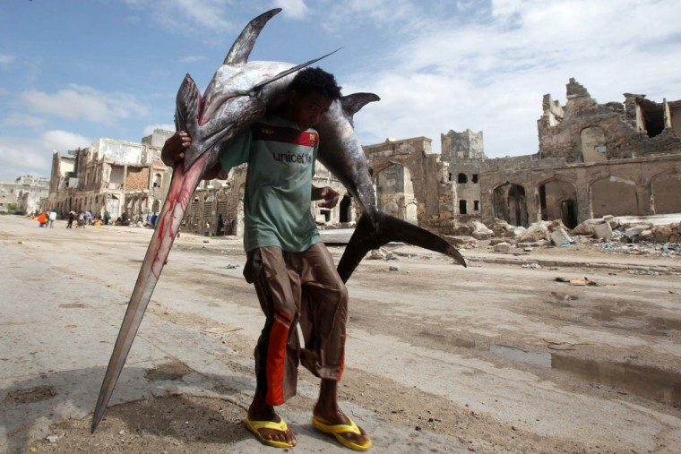 A fisherman carries a swordfish on his back from the Indian Ocean waters to the market in Somalia's capital Mogadishu on December 18, 2012. (REUTERS/Ismail Taxta)
