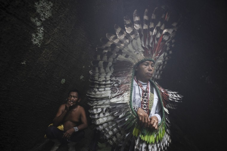 A spiritual leader of the Huni Kui Indian tribe performs a ceremony for a sacred samauma (silk-cotton) tree outside the village of Novo Segredo along the Envira river in Brazil's northwestern Acre state. (REUTERS/Lunae Parracho)