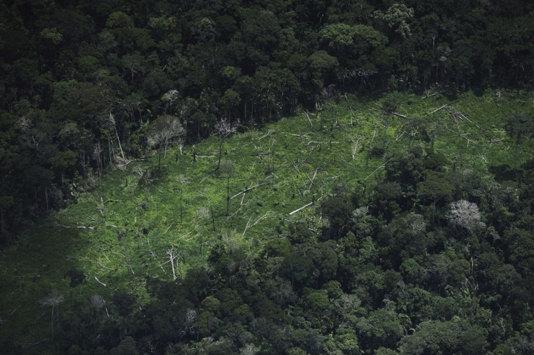 A view of an area of deforested jungle inside the Ashaninka Indian territory in Brazil's northwestern Acre state. (REUTERS/Lunae Parracho)