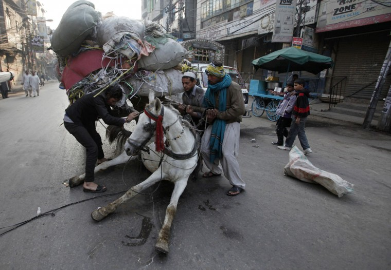 Men try to remove an overloaded cart from a horse that fell on a road in Lahore, Pakistan on December 2, 2013. (REUTERS/Mohsin Raza)