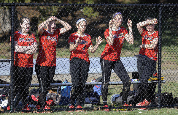 From left, Dulaney's Caroline Christofano, Rebeka Stem, Franny Brancati, Ann Benzinger and Brooke Wall cheer for teammates in the top of the sixth inning of a softball game against McDonogh in Owings Mills Tuesday, April 1. (Steve Ruark/BSMG)
