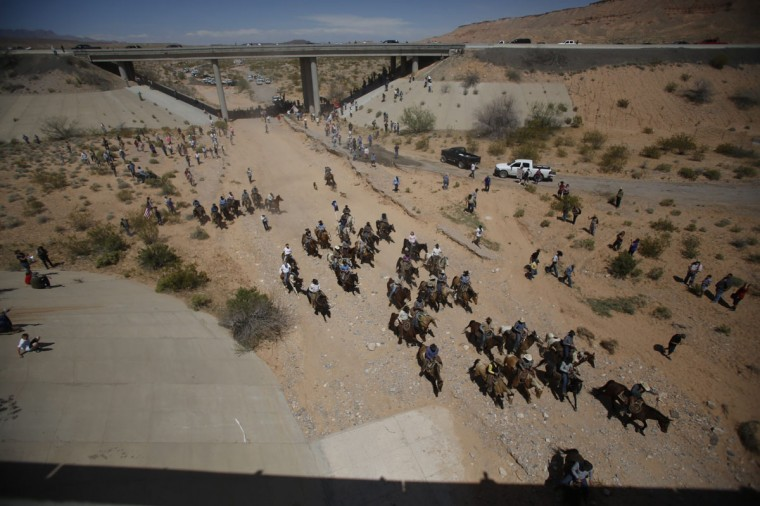 Protesters retreat from the Bureau of Land Management's base camp, where the cattle that were seized from rancher Cliven Bundy are being held, near Bunkerville, Nevada April 12, 2014. The U.S. Bureau of Land Management on Saturday said it had called off an effort to round up Bundy's herd of cattle that it had said were being illegally grazed in southern Nevada, citing concerns about safety. The conflict between Bundy and U.S. land managers had brought a team of armed federal rangers to Nevada to seize the 1,000 head of cattle. (REUTERS/Jim Urquhart)