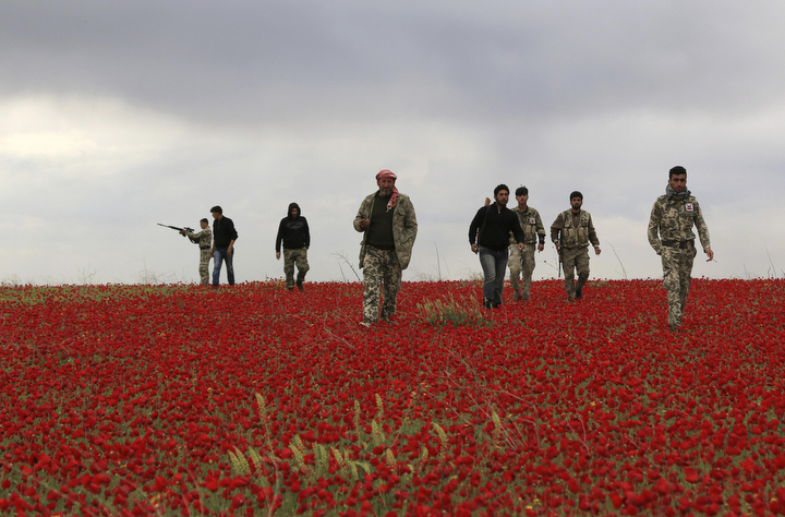 Free Army fighters in Syria walk across a field of flowers during a reconnaissance mission on the Heesh front, for what they said was an operation to take over a checkpoint belonging to the regime's forces, at the countryside in Idlib April 10, 2014. (Khalil Ashawi/Reuters)