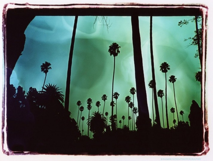 Hollywood Forever Cemetery, 2011. (Photo by Sam Holden)
