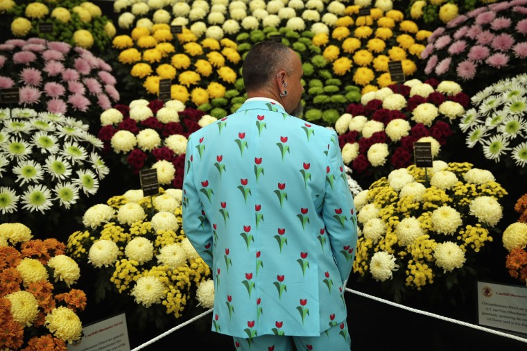 An exhibitor looks at a stand of Chrysanthemum at the 2014 Chelsea Flower Show at Royal Hospital Chelsea on May 19, 2014 in London, England. The prestigious gardening show opens to the general public on May 20, 2014, and features hundreds of stands and exhibition gardens. (Dan Kitwood/Getty Images)