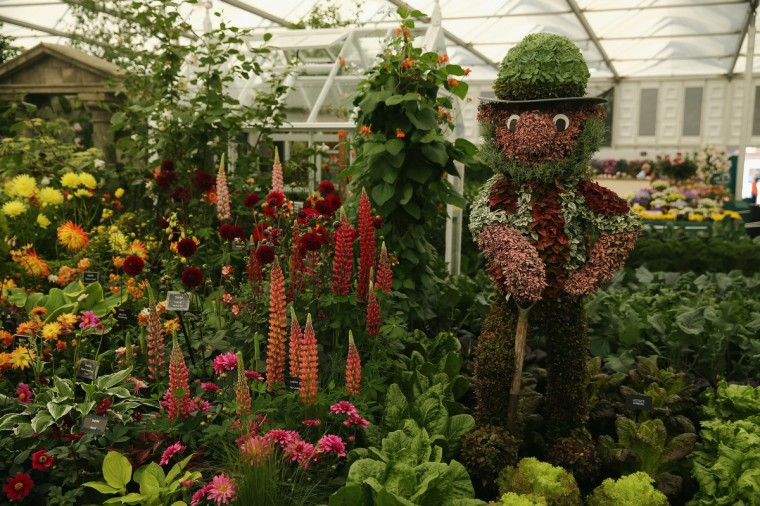 A general view of a stand in the Great Pavilion at the 2014 Chelsea Flower Show at Royal Hospital Chelsea on May 19, 2014 in London, England. The prestigious gardening show opens to the general public on May 20, 2014, and features hundreds of stands and exhibition gardens. (Dan Kitwood/Getty Images)