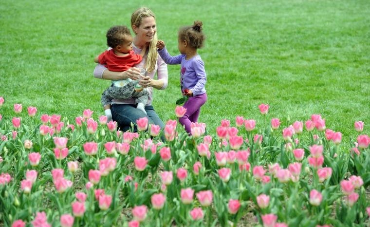 Esther RIchardson, of Federal Hill, and her children, Hudson Faustin, 15 months, and Sophia Faustin, 2, enjoy a Friday afternoon among the tulip beds in Sherwood Gardens. (Kim Hairston/Baltimore Sun)