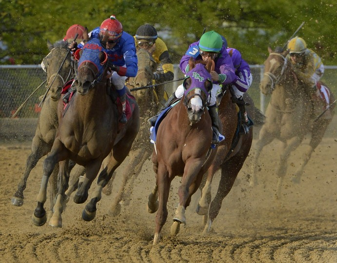California Chrome (3) powers around the fourth turn in the running of the 139th Preakness. Chrome beat the field to win, with a chance for a Triple Crown. (Karl Merton Ferron/Baltimore Sun)