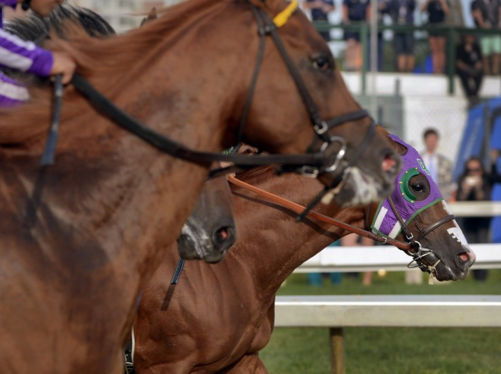 California Chrome (right) takes the early lead out of the starting gate ahead of the other horses in the running of the 139th Preakness Saturday. (Karl Merton Ferron/Baltimore Sun)