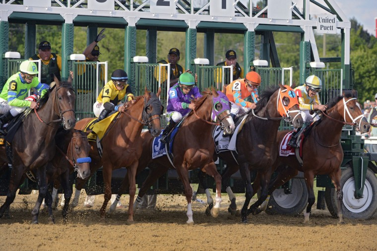 California Chrome (3) makes a good start out of the gate, but Bayern (second from left), ridden by jockey Rosie Napravnik, is low and recovers too late in the running of the 139th Preakness. (Karl Merton Ferron/Baltimore Sun)