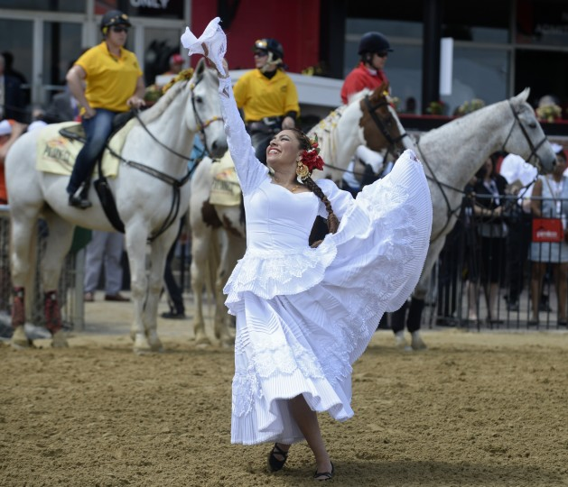 A member of the Peruvian Pasos performs at the 2014 Preakness at Pimlico Race Course. (Kenneth K. Lam/Baltimore Sun)