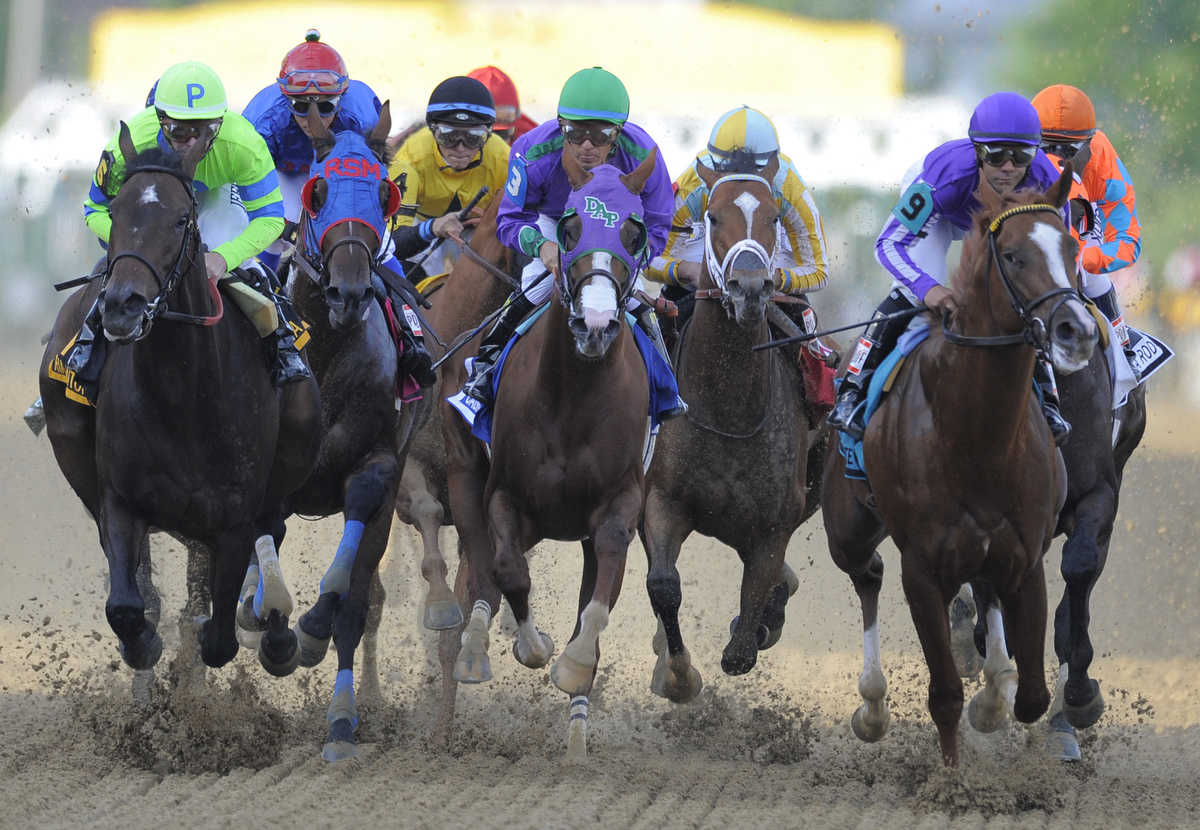 Best photos from the 2014 Preakness