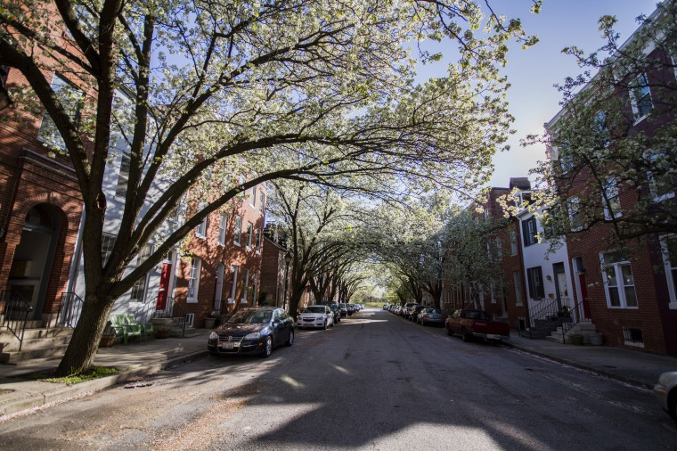 Looking west in the 600 block of S. Paca in Ridgely's Delight. (Kalani Gordon/Baltimore Sun)