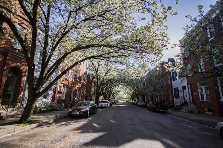 Looking west in the 600 block of S. Paca in Ridgely's Delight. (Kalani Gordon/Baltimore Sun)