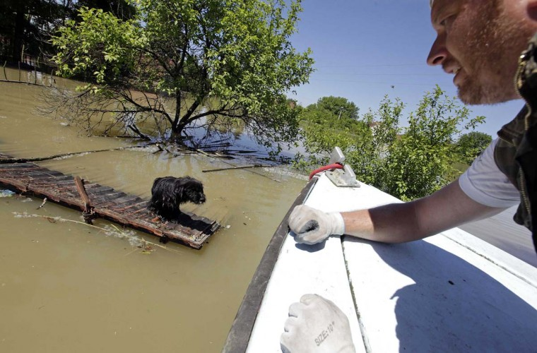 "A man rescues a dog during heavy floods in Vojskova May 19, 2014. More than a quarter of Bosnia's four million people have been affected by the worst floods to hit the Balkans in more than a century, the government said on Monday, warning of ""terrifying"" destruction comparable to the country's 1992-95 war. (Srdjan Zivulovic/Reuters)"