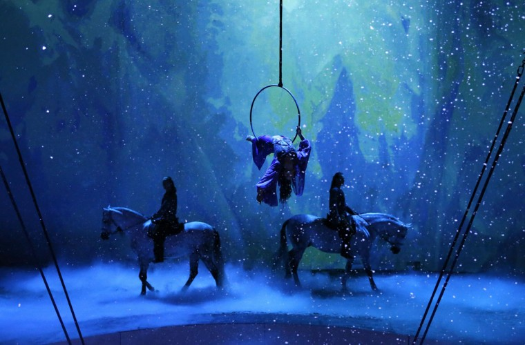 """Horses, riders and acrobats perform during a preview of the """"Cavalia"""" show, which celebrates its 10th anniversary, in Brussels May 8, 2014. The show, by Normand Latourelle of Canada, and often considered as an equestrian ballet, features 50 horses and 37 human artists, acrobats, riders and performers. (REUTERS/Yves Herman)"""