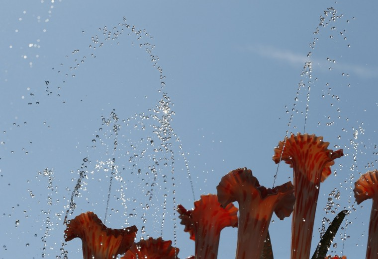 Water spouts from a creation by sculptor Mehrdad Tafreshi at the Quist stand at the Chelsea Flower Show in London May 19, 2014. (Stefan Wermuth/Reuters)