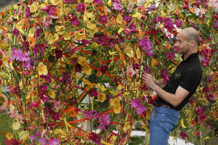A man works on a display of flowers during media day at the Chelsea Flower Show in London May 19, 2014. (Stefan Wermuth/Reuters)