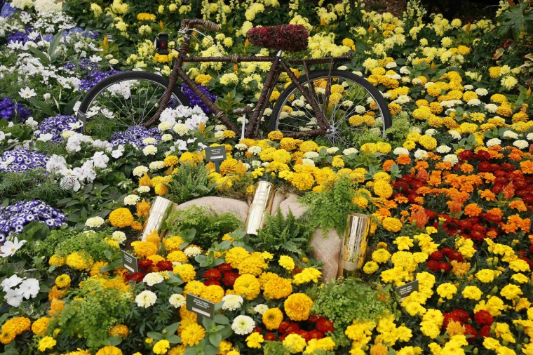 A bicycle is seen in a display of flowers during media day at the Chelsea Flower Show in London May 19, 2014. (Stefan Wermuth/Reuters)