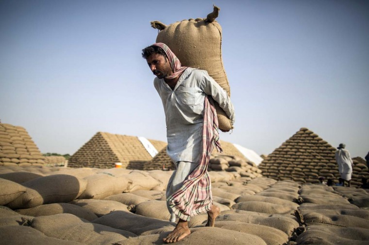 A Pakistani labourer carries a sack of wheat to build a pyramid of wheat sacks used to store wheat supplies near Multan in South Punjab province May 12, 2014. Every year hundreds of labourers help build the huge pyramids where the government stores wheat sometimes for months on end following the year's harvest, labourers said. (Zohra Bensemra/Reuters)