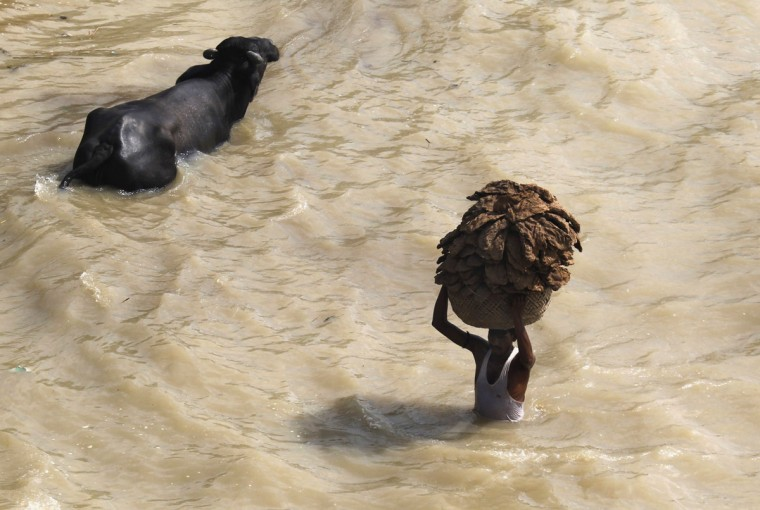 A man carries cow dung cakes in a basket as he wades through the flooded banks of the river Ganges in the northern Indian city of Allahabad on July 31, 2013. (REUTERS/Jitendra Prakash)