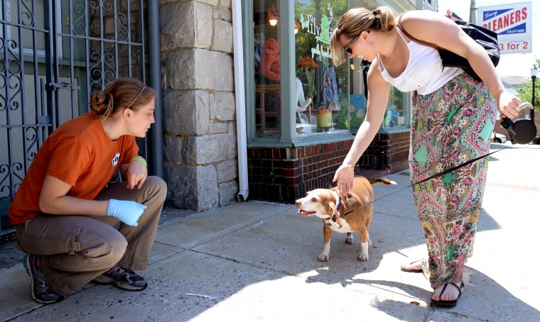 Kathryne Shomali, right, introduces her dog Little Joe to Eba Lopez, who is an employee at Uncle Wiggly's ice cream shop in Towson on Sunday, June 1, 2014. Eating an ice cream cone is one of the items on Little Joe's bucket list. (Jon Sham/BSMG)