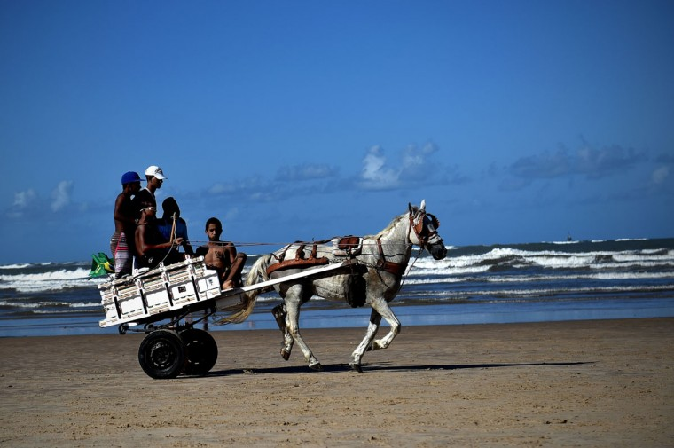 Young men ride on a what horse drawn cart on the beach of Aracaju on June 15, 2014. (ARIS MESSINIS/AFP/Getty Images)