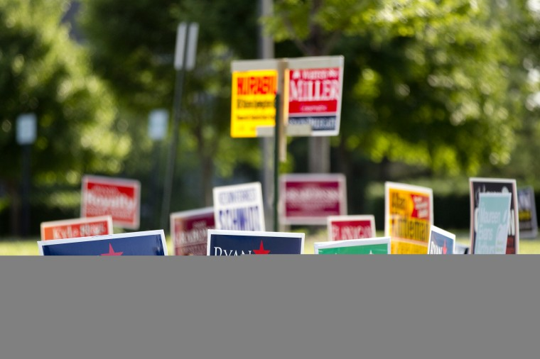 Campaign signs outside at Hollifield Station Elementary in Ellicott City on Tuesday, June 24, 2014. (Jen Rynda/BSMG)