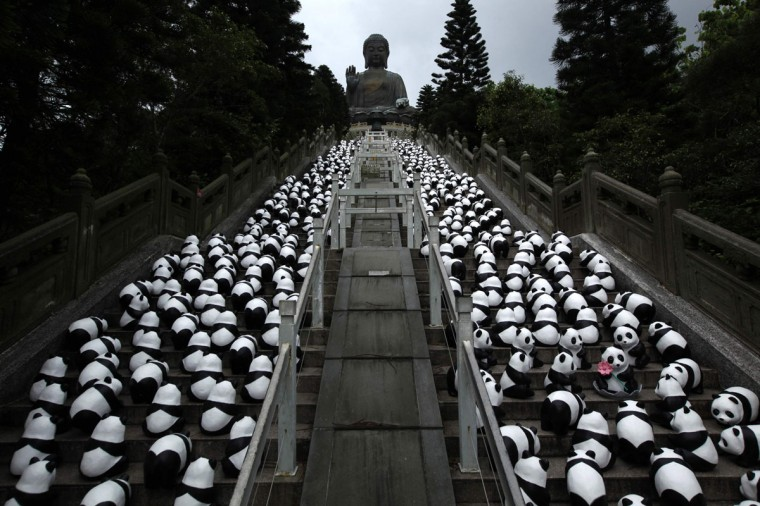 "Papier-mache pandas, created by French artist Paulo Grangeon, are seen displayed in front of the Tian Tan Buddha, a major tourist attraction which measures 34 metres (111.5 feet) tall and weighs 250 metric tons, at Po Lin Monastery on Hong Kong's Lantau Island June 10, 2014. The installation arrived in the city on Monday, launching the month-long ""1600 Pandas World Tour in Hong Kong: Creativity meets Conservation"" organized by a local art organizer, according to the official press release. (Bobby Yip/Reuters)"