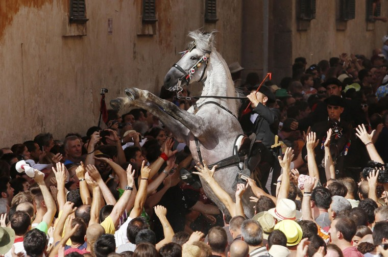 A rider rears up on his horse while surrounded by a cheering crowd during the traditional Fiesta of San Joan (Saint John) in downtown Ciutadella, on the Spanish Balearic Island of Menorca, June 23, 2014. The riders of the horses are representatives of ancient Ciutadella society - nobility, clergy, craftsmen and farmers. (REUTERS/Enrique Calvo)