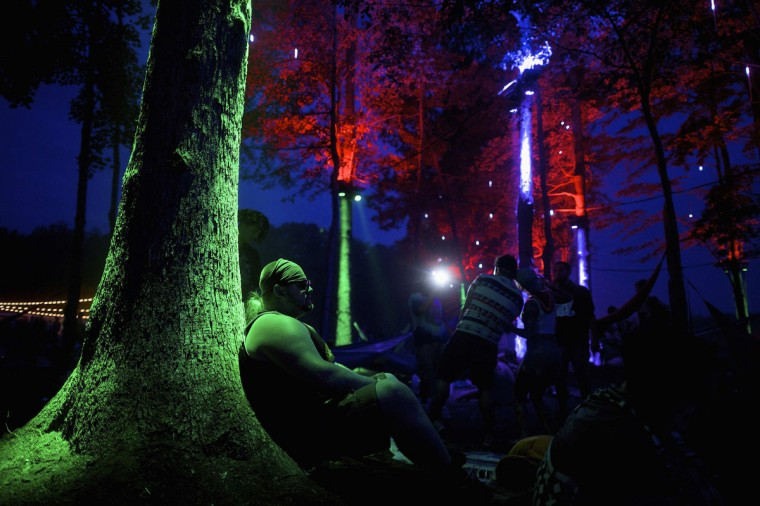Chad Miller, 26, leans against a tree for a view of the main stage during the Firefly Music Festival in Dover June 21, 2014. The four-day festival is set at the 105 acre grounds on the Dover International Speedway where many well known bands will perform. (Mark Makela/Reuters)