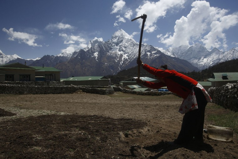 A woman works on a field in front of Mount Thamserku in Khumjung, approximately 3,700 meters above sea level in the Solukhumbu District on April 30, 2014. (REUTERS/Navesh Chitrakar)