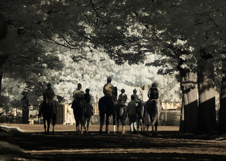 A general view of horses and exercise riders heading to the main track for training at Belmont Park on June 3, 2014 in Elmont, New York. (Photo by Al Bello/Getty Images/An infrared camera was used to create this image)