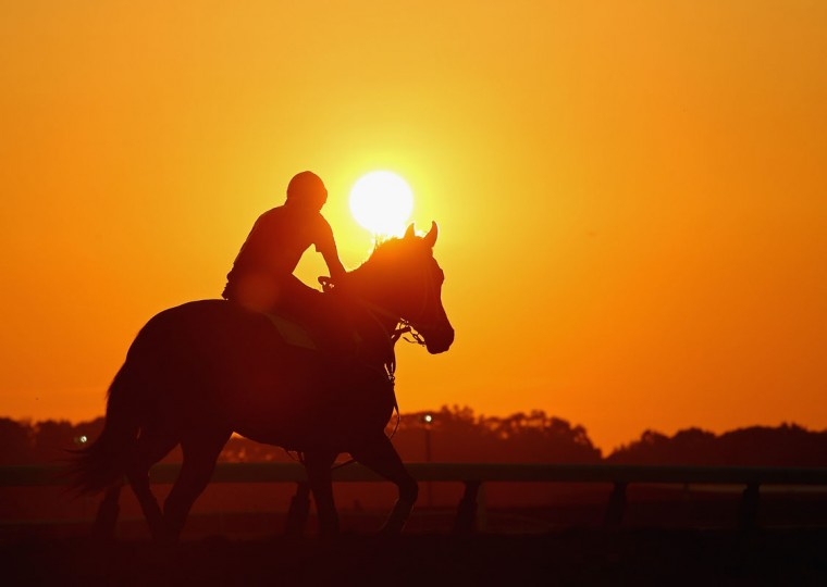 A general view of a horse and exercise rider training at sunrise on the main track for training at Belmont Park on June 3, 2014 in Elmont, New York. (Photo by Al Bello/Getty Images)