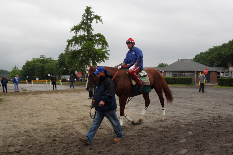 California Chrome is led to the track for a workout in preparation for running in the Belmont Stakes at Belmont Park. (Brad Penner-USA TODAY Sports)