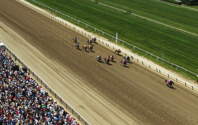 A general view of race 5 during the 2014 Belmont Stakes at Belmont Park. (Brad Penner-USA TODAY Sports)