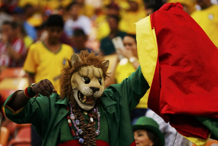 A fan of Cameroon cheers before their 2014 World Cup Group A soccer match against Croatia at the Amazonia arena in Manaus June 18, 2014. (Siphiwe Sibeko/Reuters photo)
