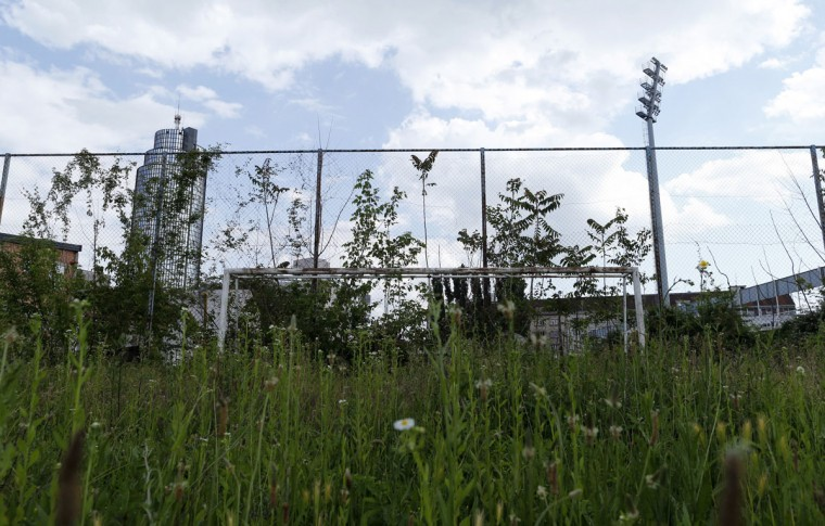 Grass grows in front of a goalpost in downtown Zagreb, Croatia on June 2, 2014. (REUTERS/Antonio Bronic)