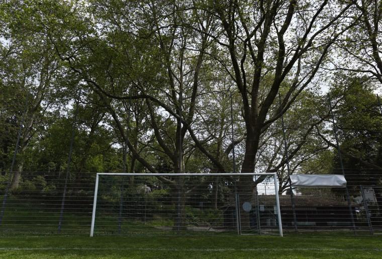 A goalpost stands in a public training ground in Bern, Switzerland on June 1, 2014. (REUTERS/Ruben Sprich)