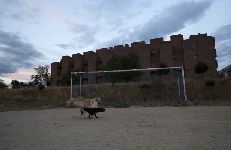 Dogs run past a soccer goalpost at dusk in Madrid, Spain on May 29, 2014. (REUTERS/Sergio Perez)
