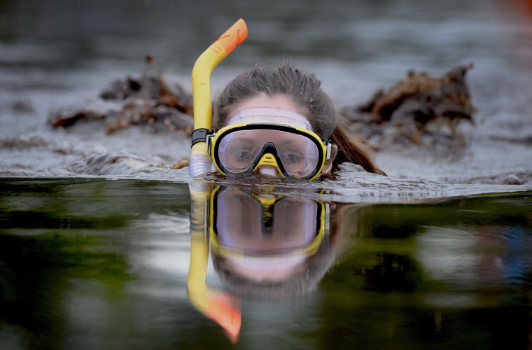 A female entrant takes part in the Irish Bog Snorkelling championship this afternoon at Peatlands Park on July 27, 2014 in Dungannon, Northern Ireland. The annual event sees male and female competitors swim the 60m length of the bog watched by scores of spectators and takes place on International Bog Day. (Charles McQuillan/Getty Images)