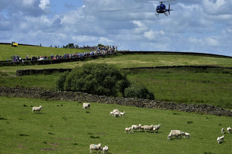 The pack rides during the 190.5 km first stage of the 101st edition of the Tour de France cycling race on July 5, 2014 between Leeds and Harrogate, northern England. The 2014 Tour de France gets underway on July 5 in the streets of Leeds and ends on July 27 down the Champs-Elysees in Paris. (Jeff Pachoud/Getty Images)
