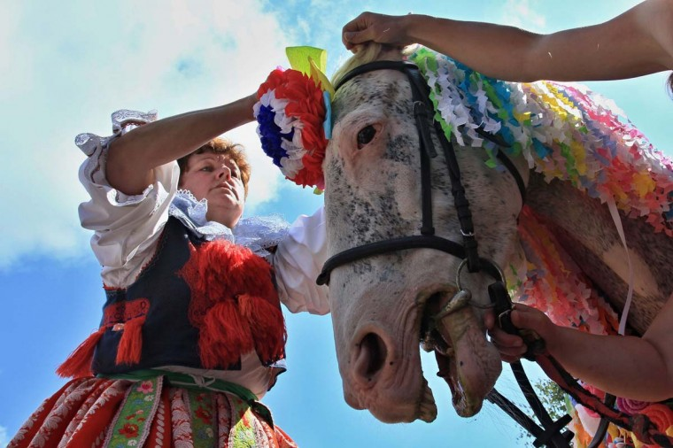 A horse is prepared prior to the ide of the Kings in Vlcnov, south Moravia, in the Czech Republic on May 25, 2014. The Ride of the Kings is one of the most famous folk customs of the country.   Leoš Janáček, a Czech composer who celebrated Moravian traditions in  much of his work was born 160 years ago today on July 3, 1854.     || CREDIT: RADEK MICA - AFP/GETTY IMAGES